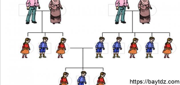 مفهوم شجرة النسب
