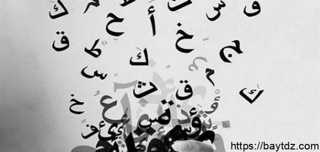مقالة عن اللغة العربية