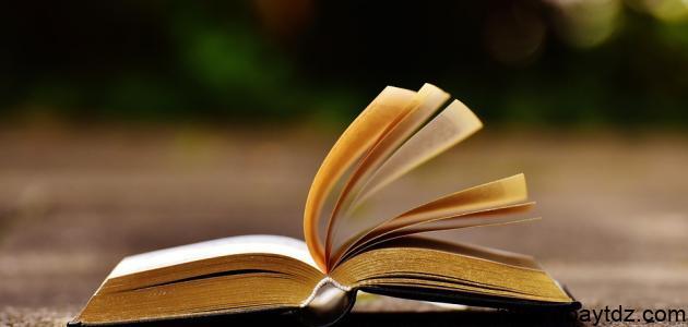 ملخص كتاب رؤيتي