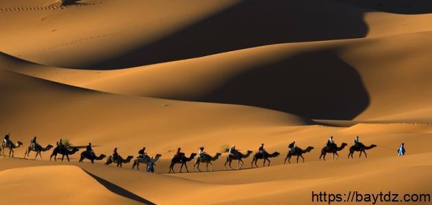 من أول نبي من نسل العرب