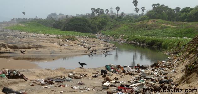 موضوع تعبير عن تلوث نهر النيل