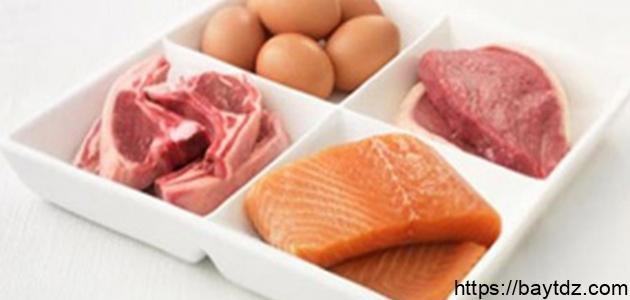 نظام غذائي غني بالبروتين