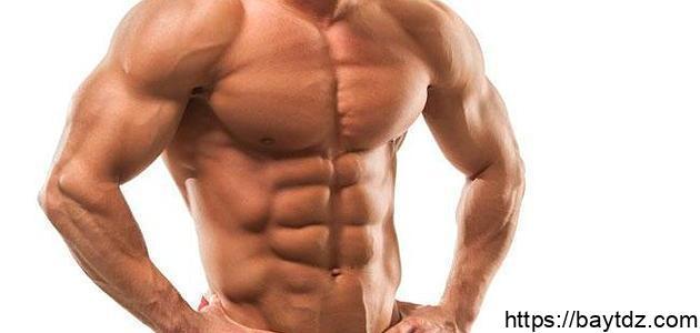 نظام غذائي لحرق الدهون وبناء العضلات