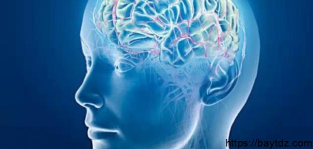 هل هناك علاقة بين التفكير الإبداعي والذكاء