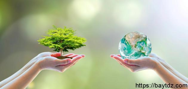 وسائل المحافظة على البيئة في الإسلام ومحاربة التلوث