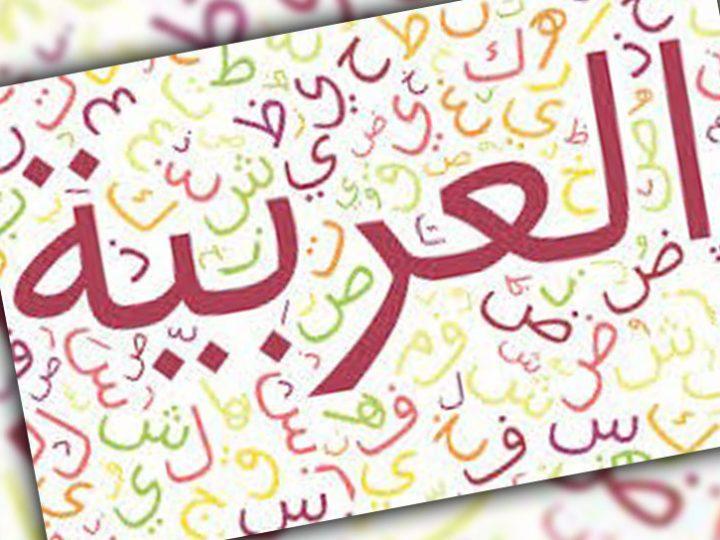 الاسلوب الخبري والانشائي في اللغة العربية