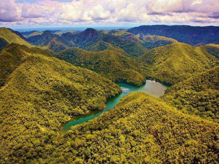 السياحة في غابات الامازون