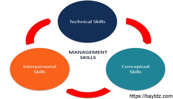 المهارات الإدارية التي تحتاجها كل مدير