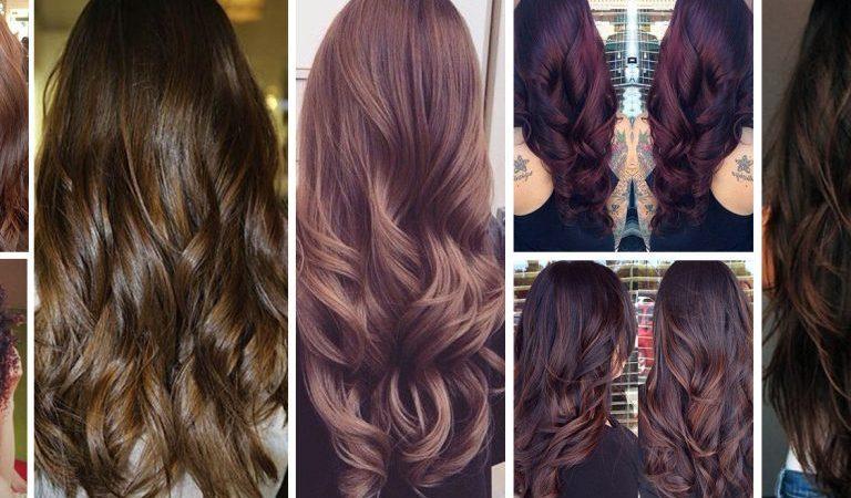 انواع الشعر وطرق العناية به