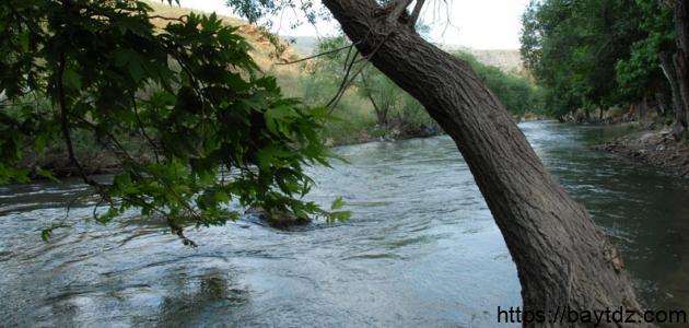 اين يقع نهر الليطاني