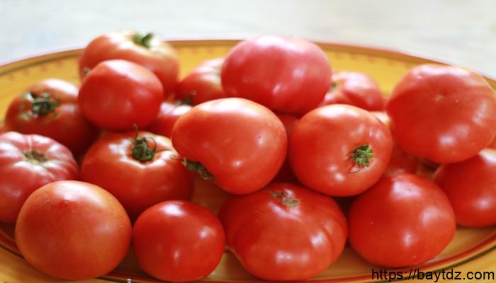 زراعة الطماطم العضوية