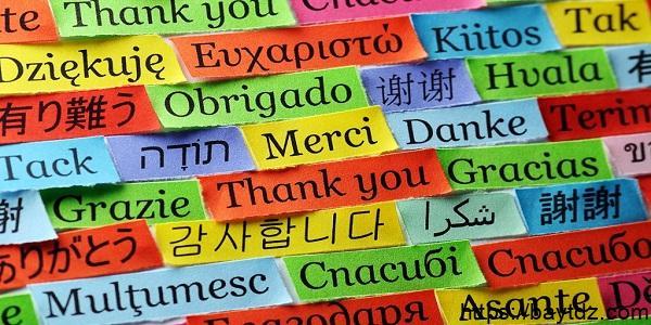 شجرة اللغات العالمية