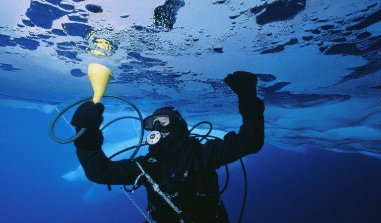 ما هو علم المحيطات