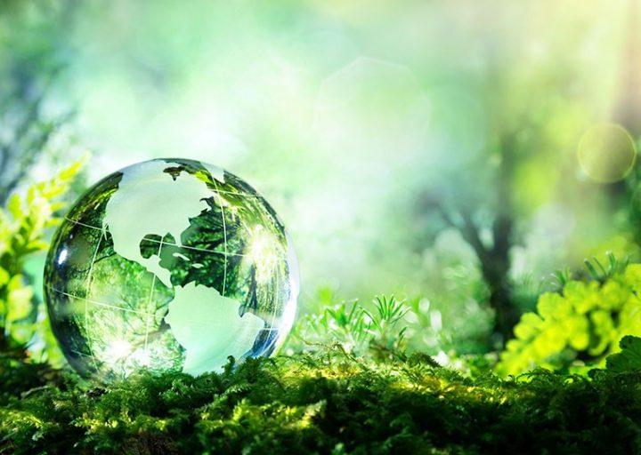 ما هي السياحة الخضراء