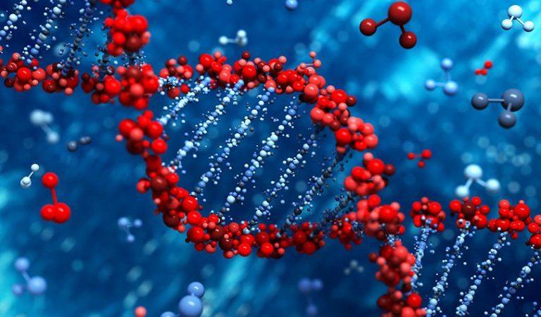 ما هي الهندسة الوراثية