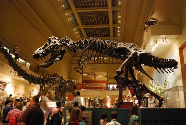 متحف سميثسونيان للتاريخ الطبيعي