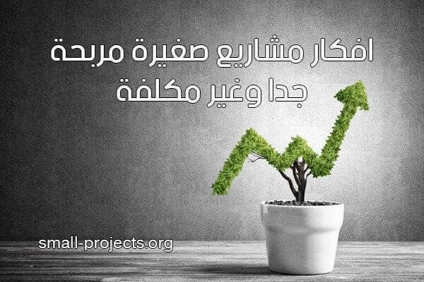افكار مشاريع صغيرة مربحة جدا وغير مكلفة