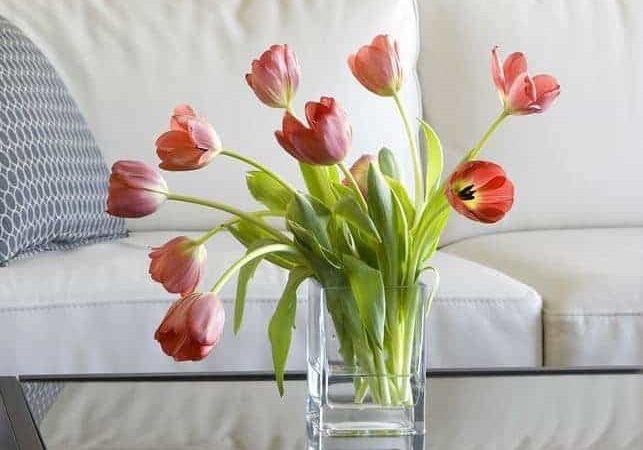 طريقة الحفاظ على الورد الطبيعي من الذبول