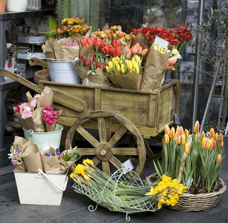 مشروع عربة بيع الورد بتكاليف بسيطة وربح جيد